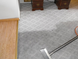 carpet cleaning help