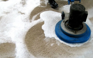 carpet contaminations types