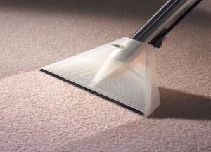 Maintenance of your carpet